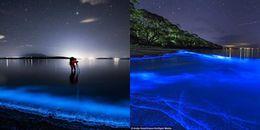 Du khách 'phát sốt' với bãi biển phát ánh sáng màu xanh lam kỳ diệu trong đêm