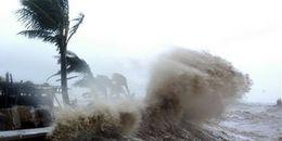 Tâm bão Damrey giật cấp 15 đổ bộ vào Khánh Hòa trong rạng sáng ngày 4/11