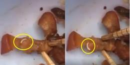 Clip sinh viên phản ánh dòi bò lúc nhúc trong thịt kho trứng, ký túc xá Đại học Quốc gia lên tiếng