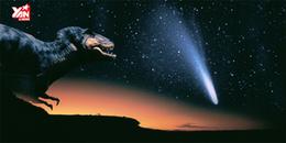 Liệu thảm họa Chicxulub có phải là nguyên nhân chính khiến khủng long tuyệt chủng?