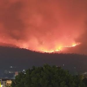yan.vn - tin sao, ngôi sao - Chiang Mai ô nhiễm không khí, động vật chết dần vì cháy rừng