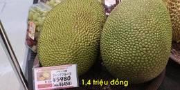 yan.vn - tin sao, ngôi sao - Việt Nam bán 4 ngàn/kg, mít sang tới Nhật có giá 1,4 triệu đồng/quả